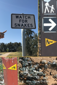 snake signs