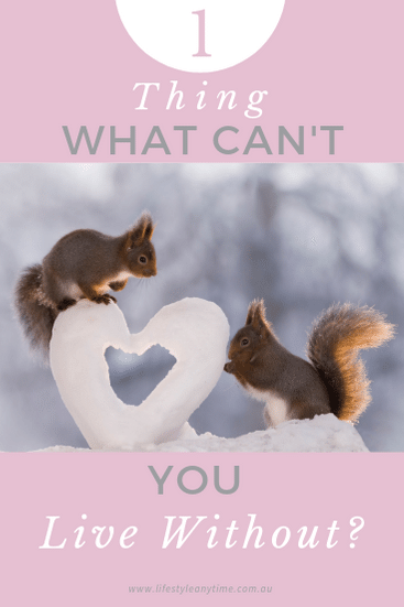 What can't you live without, the two squirrels here share a snow love heart.